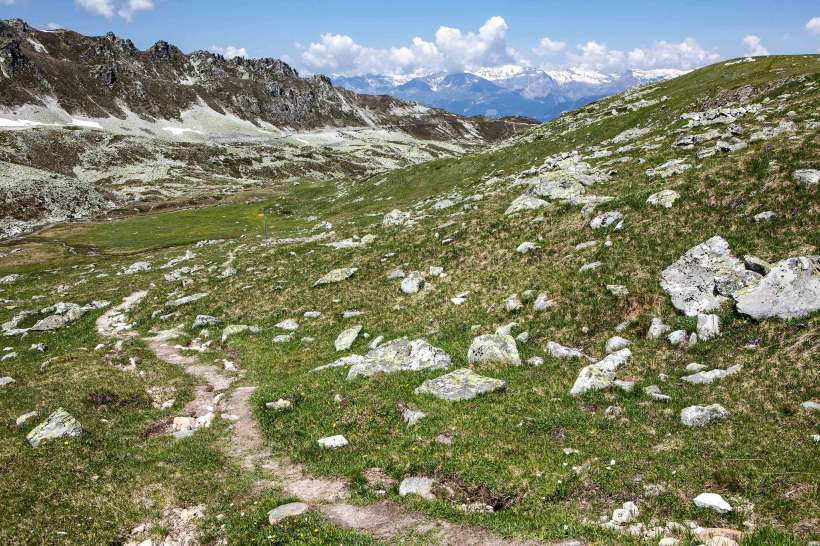Tignousa - Le Toûno - St. Luc: Pointes de Nava, Val d´Anniviers, Arpelistock, Wildhorn