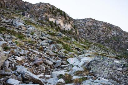 06-anstieg-zur-turtmannhuette.jpg
