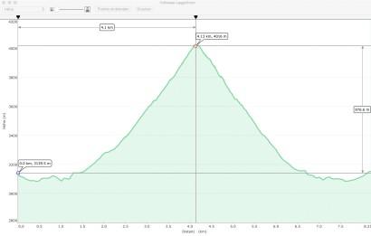 GPS-Hoehenprofil-Hohsaas-Lagginhorn.jpg